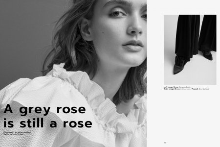 A_grey_rose_is_still_a_rose_1